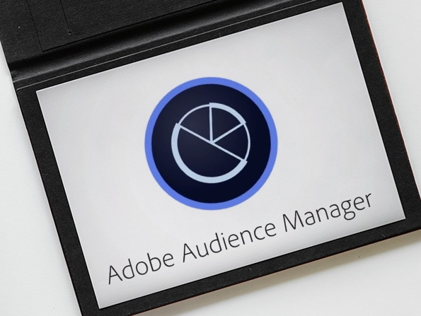 Adobe Audience Manager DMP